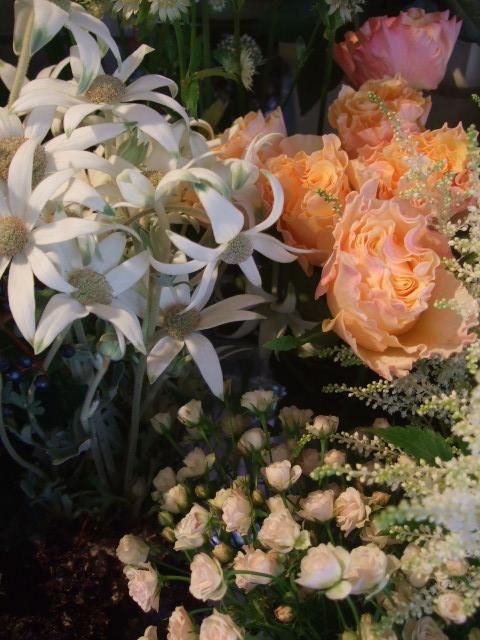 オークリーフ(お正月の花たち)_f0049672_10322421.jpg