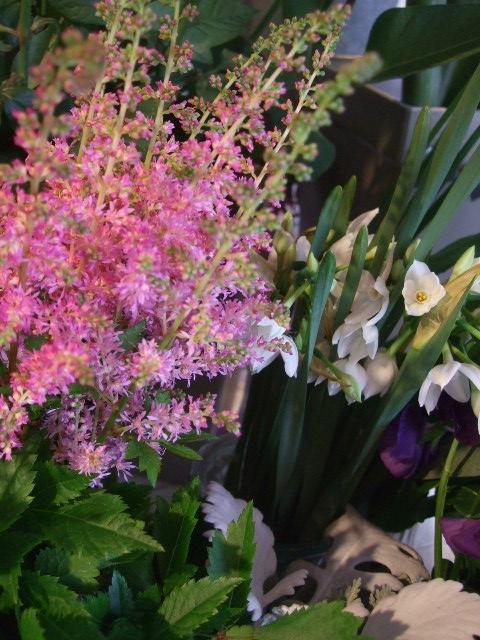 オークリーフ(お正月の花たち)_f0049672_10323551.jpg