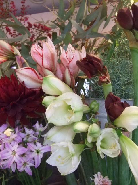 オークリーフ(お正月の花たち)_f0049672_10334097.jpg