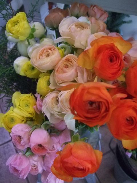 オークリーフ(お正月の花たち)_f0049672_10343710.jpg