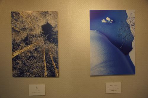 回顧2012 写真展「おといねっぷの森から」_b0108779_2083283.jpg