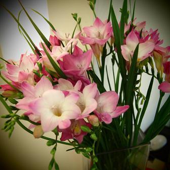 今年最後のお花_f0202682_16314641.jpg