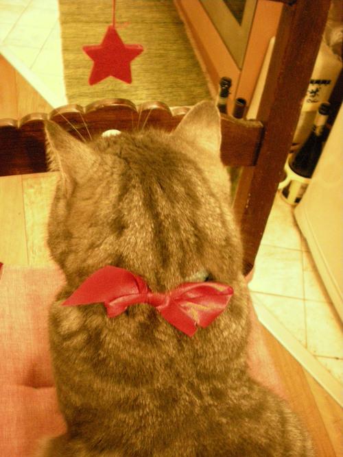 2012 年のクリスマスを振り返って。。_c0179785_7503643.jpg