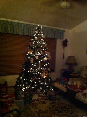 メリークリスマス_d0156997_10361117.jpg