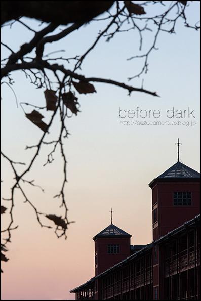 日が暮れる前に_f0100215_18385313.jpg