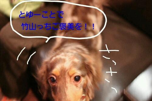 b0130018_20304665.jpg