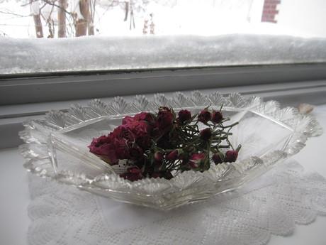 お庭も雪で埋まりそう_a0279743_13335539.jpg
