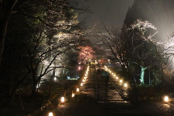 花灯路2012in嵐山_d0227044_18104236.jpg