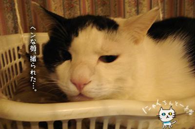 ヘン顔_e0031853_21421856.jpg