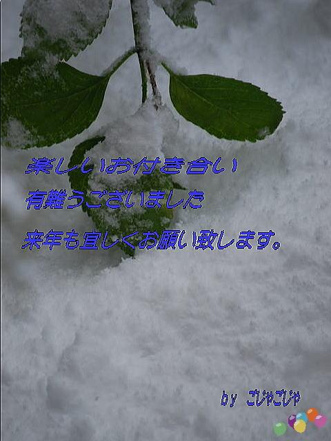 b0189573_23545759.jpg