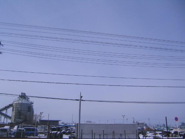 今日はいい天気ですねヽ( ´ー`)ノ _a0291590_10123642.jpg