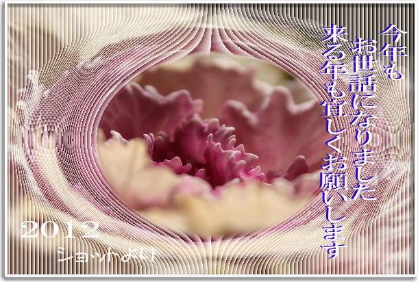f0164592_1940034.jpg