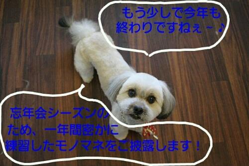 b0130018_832563.jpg