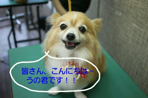 b0130018_8334216.jpg