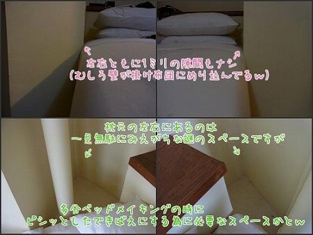a0074049_23575243.jpg