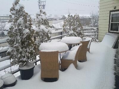今日は雪_d0186154_9421524.jpg