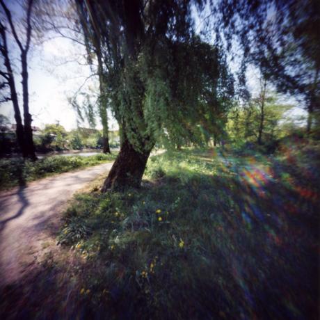 春の光 ドナウヴェルトの散策路とホテルの朝食 Pinhole Photography_f0117059_20255634.jpg