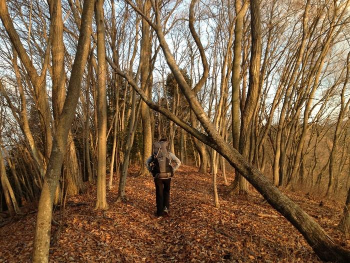 2012.12.23 笹尾根を大きなバックパックで歩く_b0219778_2244680.jpg