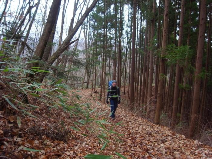 2012.12.23 笹尾根を大きなバックパックで歩く_b0219778_22512978.jpg