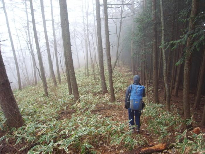 2012.12.23 笹尾根を大きなバックパックで歩く_b0219778_23112922.jpg