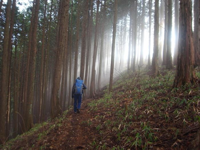 2012.12.23 笹尾根を大きなバックパックで歩く_b0219778_2318473.jpg