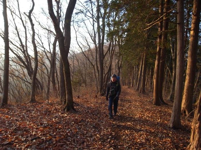 2012.12.23 笹尾根を大きなバックパックで歩く_b0219778_23241397.jpg