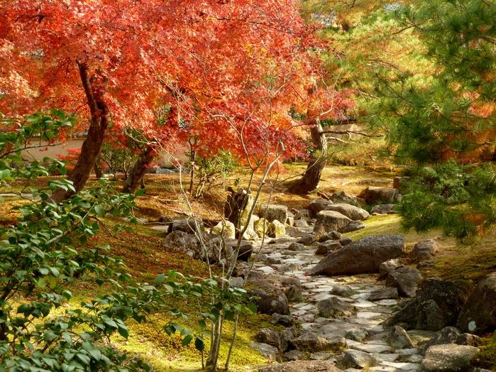 晩秋の京都 31_b0093088_10382281.jpg