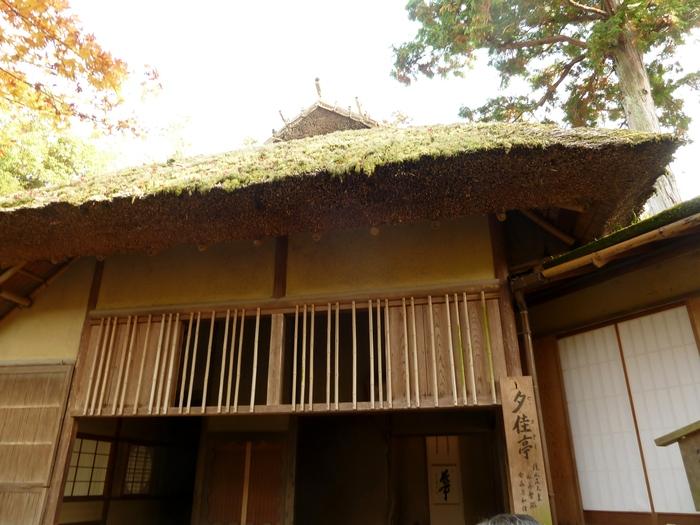 晩秋の京都 31_b0093088_10413917.jpg