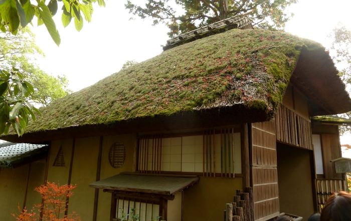 晩秋の京都 31_b0093088_1041749.jpg