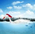 それぞれのクリスマス_c0027188_3473356.jpg