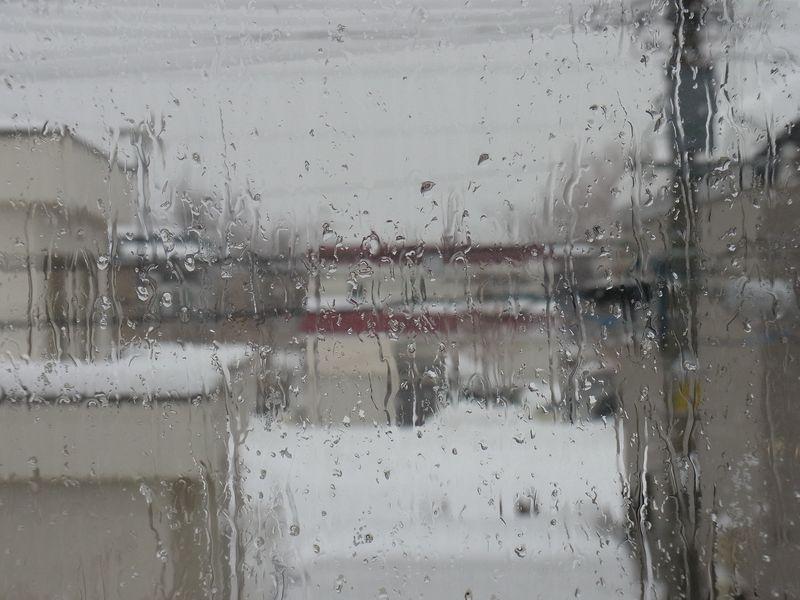 年末の雨_c0025115_2272159.jpg