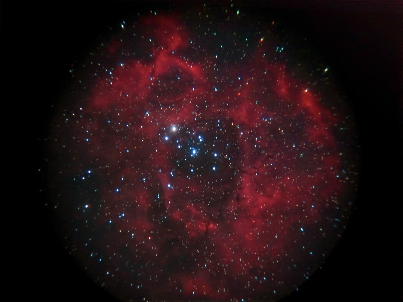 2012年の集大成(バラ星雲)_b0167343_127341.jpg
