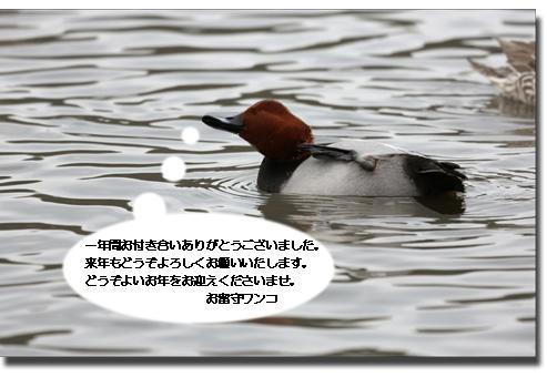 f0111147_1732843.jpg