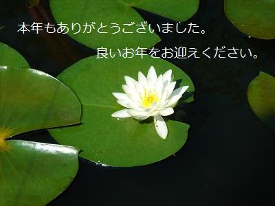 e0254750_1439554.jpg