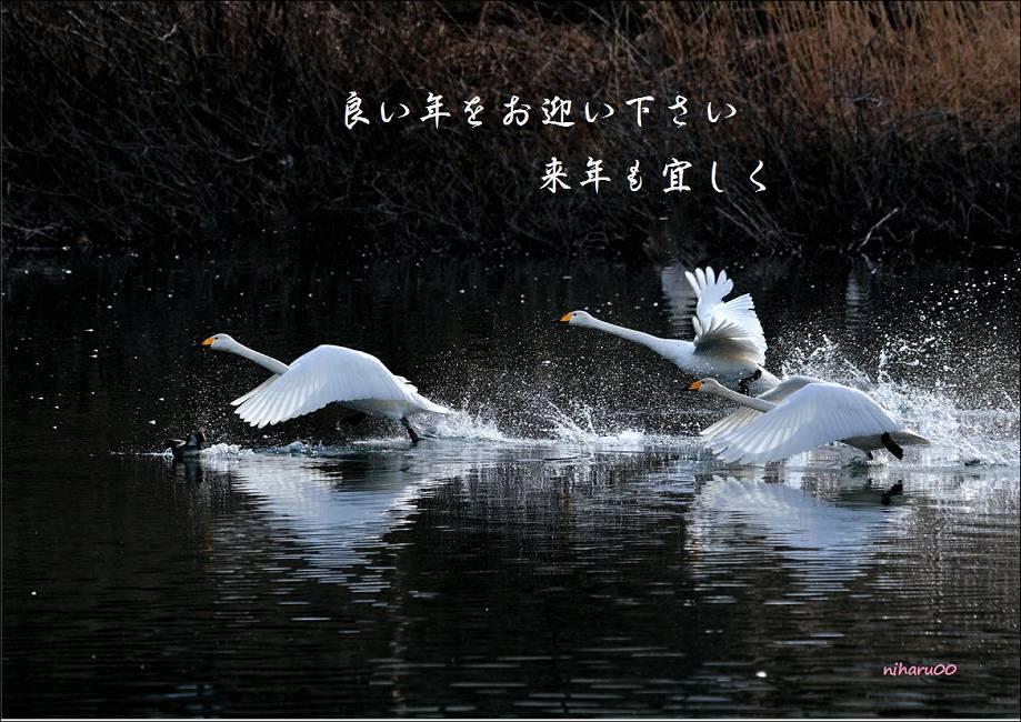 b0223668_834531.jpg