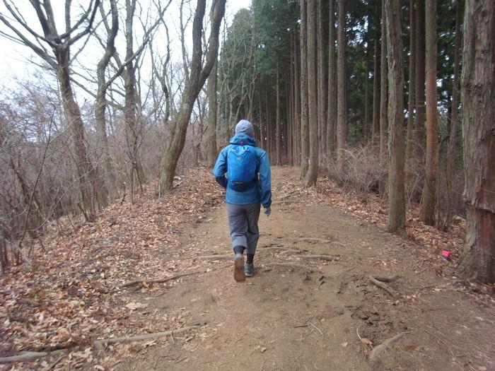 2012.12.28 笹尾根を南東へ (上川乗-浅間峠-陣馬山-高尾山口)_b0219778_2364981.jpg