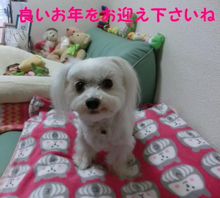 b0193480_10415877.jpg
