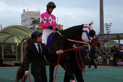東京大賞典は、GIハンター岩田騎手に導かれたローマンレジェンドが初GI制覇! _b0015386_0501618.jpg