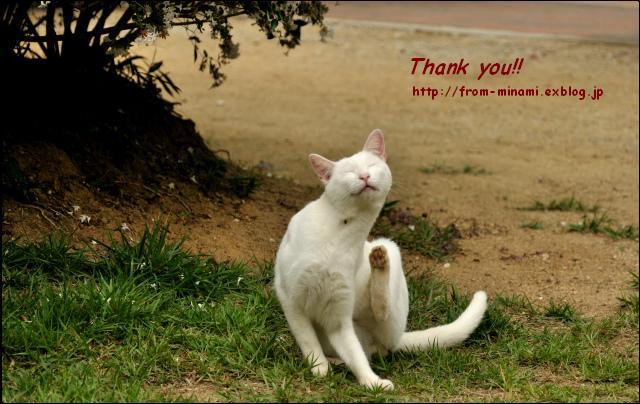 今年もありがとうございました_e0184300_133083.jpg