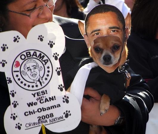 オバマさん一家の家族写真カレンダー_b0007805_1402289.jpg