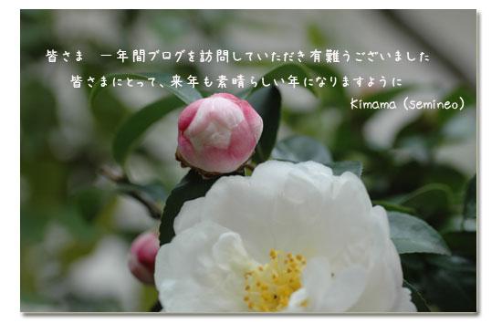c0051105_1392272.jpg