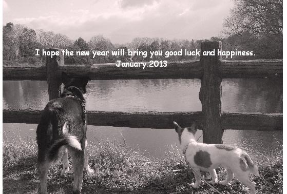 A HAPPY  NEW YEAR !_c0203505_1832573.jpg