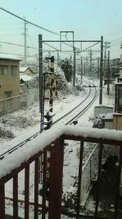 大晦日、雪の中、決意表明【参院選2013】_e0094315_11151658.jpg