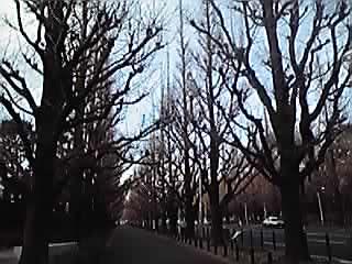 静かな大晦日です_b0132442_19264173.jpg