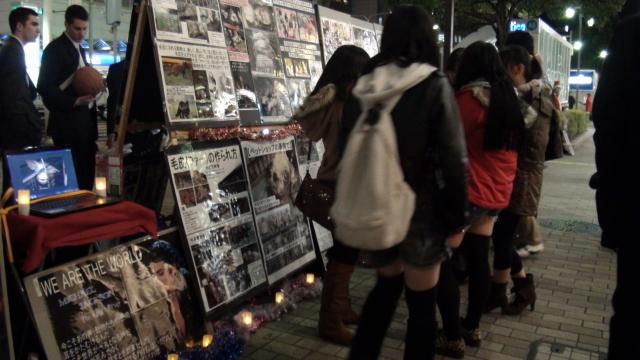 動物たちのためのキャンドルナイト2012@三ノ宮_b0198356_2141724.jpg