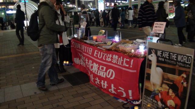動物たちのためのキャンドルナイト2012@三ノ宮_b0198356_3355884.jpg
