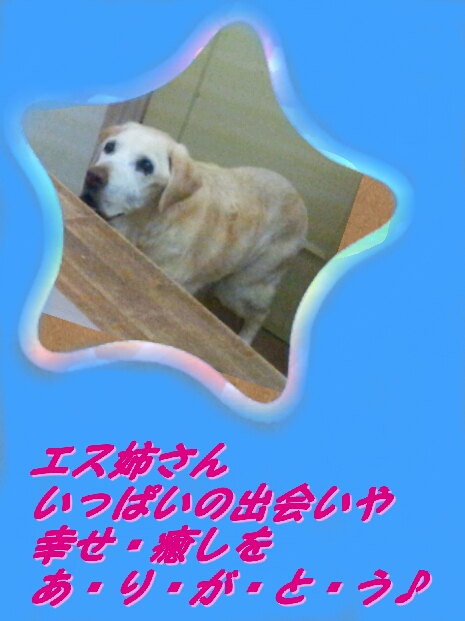 b0253057_16312936.jpg