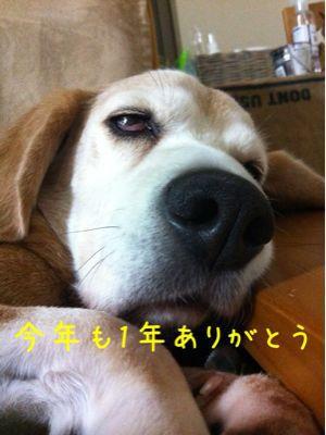 b0098660_18305926.jpg