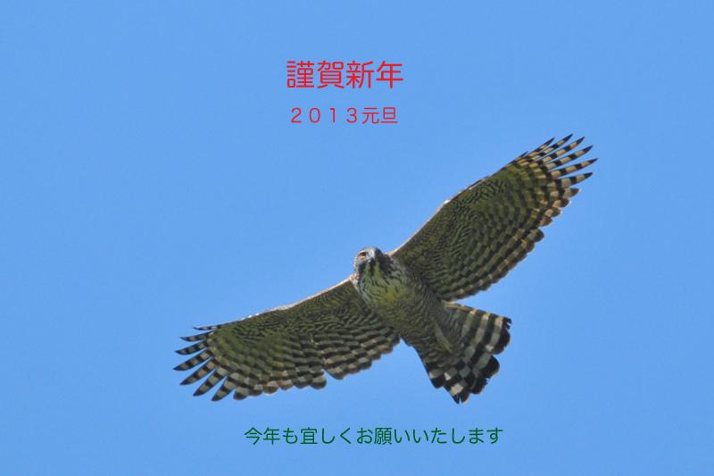f0053272_14103861.jpg