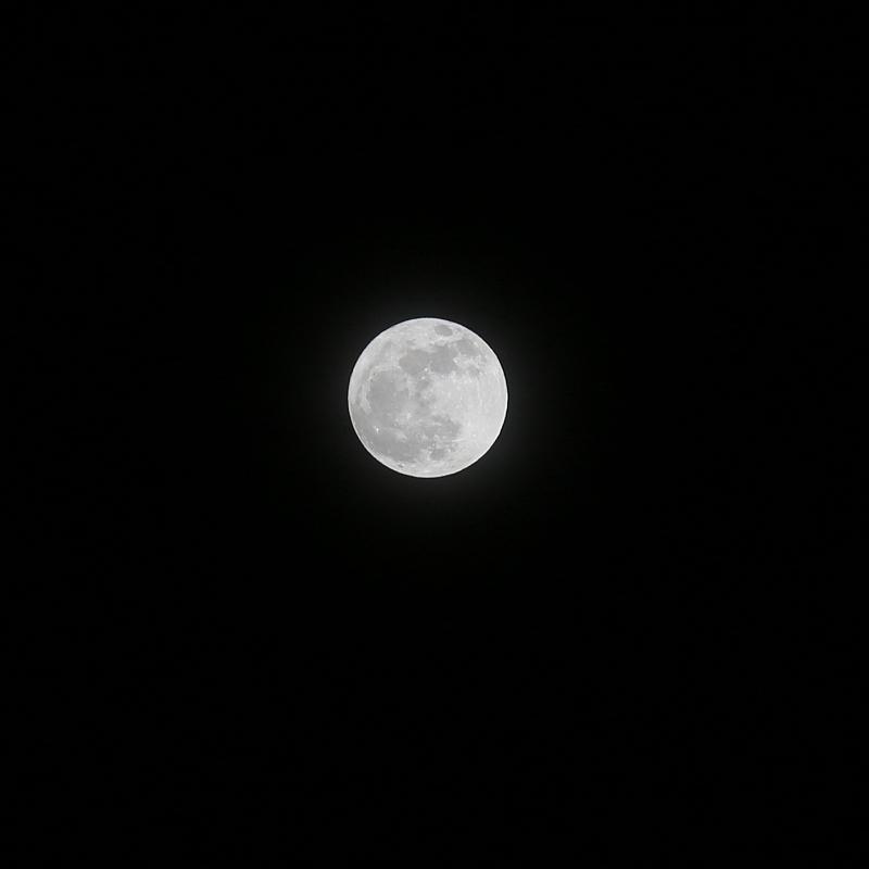 満月_a0160581_88350.jpg
